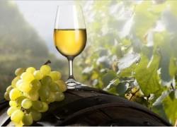 Знаменитые вина Грузии снова в России