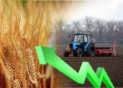 Итоги посевной и прогноза на урожай 2014 года