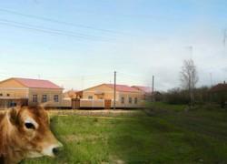 Кто виноват и что делать? Пути спасения Российского села