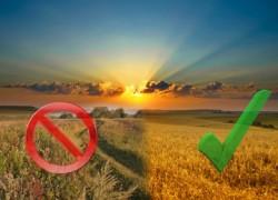 Новые правила в использование земель сельсхоз назначения