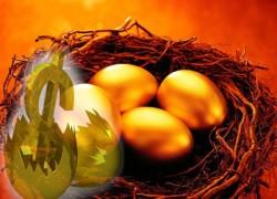Почему растут цены на куриные яйца?