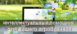 Слайд КОРАЛЛ 2