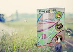 Особенности содержания и выращивания домашней птицы