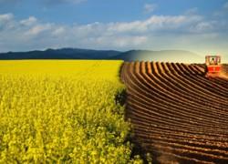 Проблема плодородия пашни и эффективного использования почвы