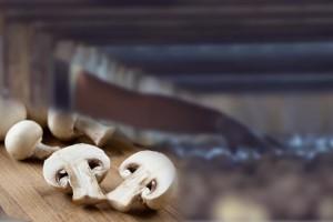 Перспективы развития грибоводства в России