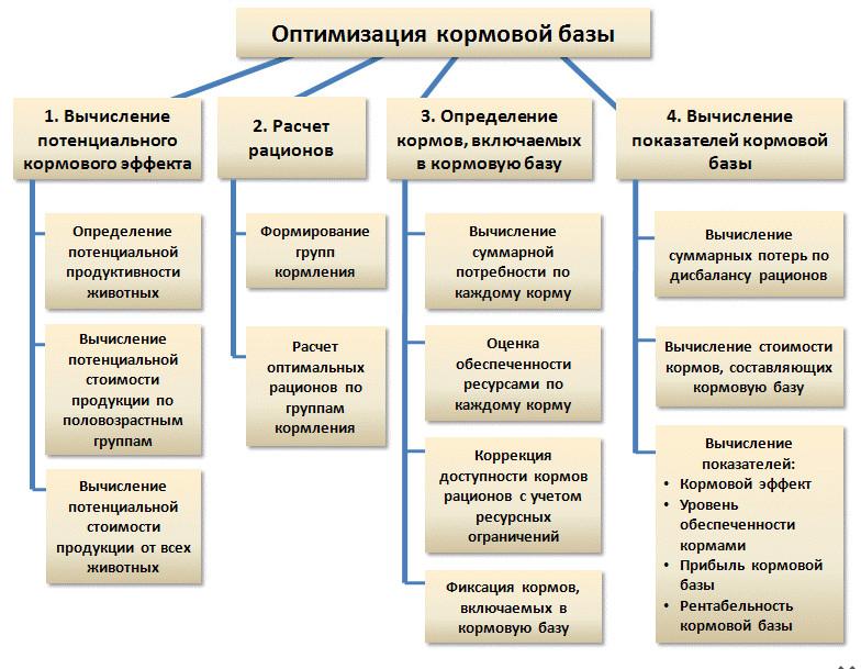 оптимизация кормовой базы. Схема