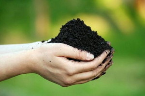 объемная масса почвы_obemnaya massa pochvy