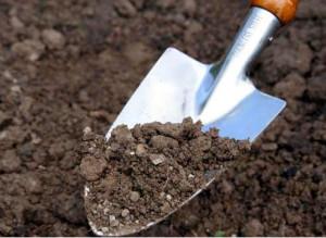мониторенг продуктивности почвы