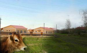 Пути-спасения-Российского-села