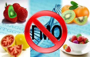ГМО--благо-или-вред