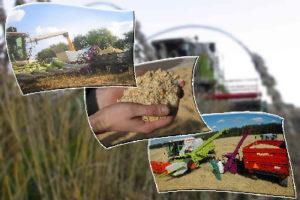 эффективное-использование-фуражного-зерна