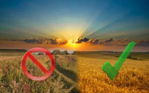 земли-сельхоз-назначения