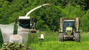 Технология заготовки травяной муки