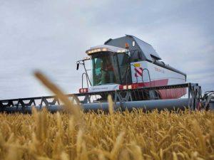Стратегия импортозамещения в сельском хозяйстве