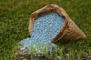 Удобрения — основной фактор влияющий на плодородие