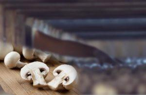 Перспективы-развития-грибоводства-в-России